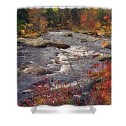 Autumn River Shower Curtain by Joann Vitali