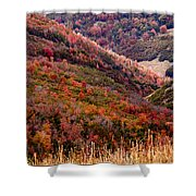 Autumn Shower Curtain by Rona Black