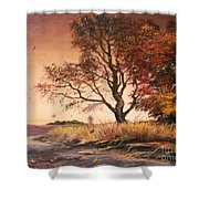 Autumn Simphony In France Shower Curtain by Sorin Apostolescu