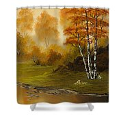 Autumn Splendor Shower Curtain by C Steele