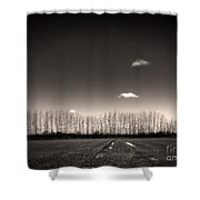 Autumn Trees Shower Curtain by Stelios Kleanthous