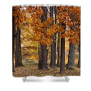 Autumn View Shower Curtain by Sandy Keeton