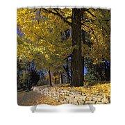 Autumn Wall - Fm000082 Shower Curtain by Daniel Dempster
