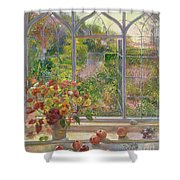 Autumn Windows Shower Curtain by Timothy  Easton