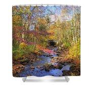 Autumn Woods Shower Curtain by Joann Vitali