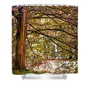 Autumnal Colors In The Summer Time. De Haar Castle Park Shower Curtain by Jenny Rainbow