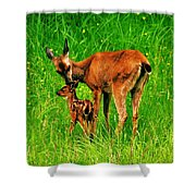 Aww Mom Shower Curtain by Benjamin Yeager