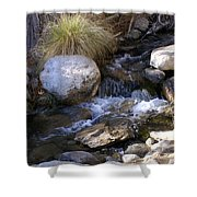 Babbling Brook Shower Curtain by Barbara Snyder