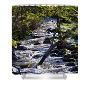 Babbling Brook Shower Curtain by Bill Cannon
