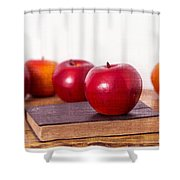 Back to School Apples Shower Curtain by Edward Fielding