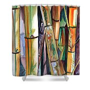 Bamboo Garden Shower Curtain by Marionette Taboniar