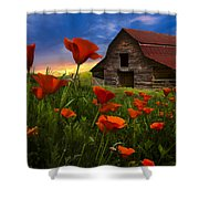 Barn In Poppies Shower Curtain by Debra and Dave Vanderlaan