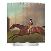 Baronet With Sam Chifney Up Shower Curtain by George Stubbs