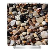 Beach Agates Shower Curtain by Carol Groenen