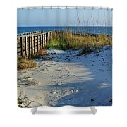Beach And The Walkway  Shower Curtain by Michael Thomas