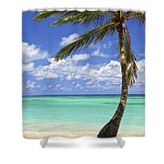 Beach Of A Tropical Island Shower Curtain by Elena Elisseeva