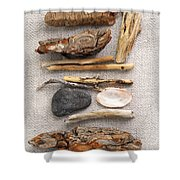 Beach treasures Shower Curtain by Elena Elisseeva