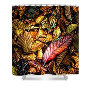 Beautiful Fall Color Shower Curtain by Meirion Matthias
