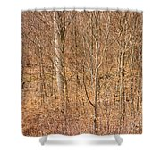 Beautiful Fine Structure Of Trees Brown And Orange Shower Curtain by Matthias Hauser