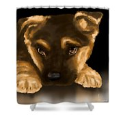 Beautiful puppy Shower Curtain by Veronica Minozzi
