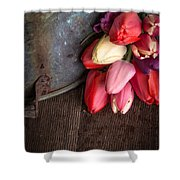 Beautiful Spring Tulips Shower Curtain by Edward Fielding