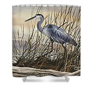 Beauty Along The Shore Shower Curtain by James Williamson