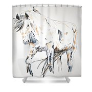 Beauty Shower Curtain by Crystal Hubbard