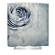 Beauty In Blue Shower Curtain by Priska Wettstein