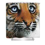 Beauty Of My Mother's Eyes Shower Curtain by Jurek Zamoyski