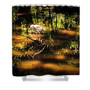 Beauty Of The Bog Shower Curtain by Karen Wiles