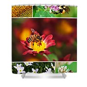 Bee Collage Shower Curtain by Christina Rollo