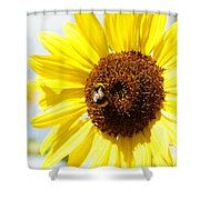 Bee Shower Curtain by Les Cunliffe