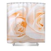 Beige Roses Shower Curtain by Elena Elisseeva