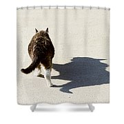 Big Cat Ferocious Shadow Shower Curtain by James BO  Insogna