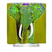 Big Elephant 20130201p60 Shower Curtain by Wingsdomain Art and Photography