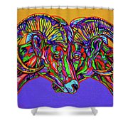 Bighorn Sheep Shower Curtain by Derrick Higgins