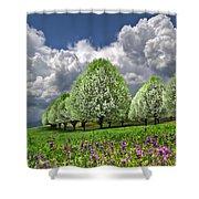 Billows Shower Curtain by Debra and Dave Vanderlaan