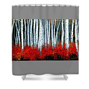Birch 24 X 48  Shower Curtain by Michael Swanson