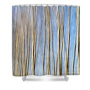 Birch Trees Shower Curtain by Stelios Kleanthous