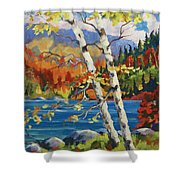 Birches By The Lake Shower Curtain by Richard T Pranke