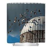 Bird - BIRDS Shower Curtain by Mike Savad