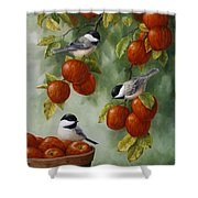 Bird Painting - Apple Harvest Chickadees Shower Curtain by Crista Forest
