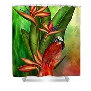 Birds Of Paradise Shower Curtain by Carol Cavalaris