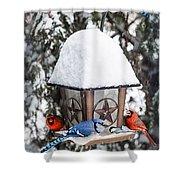 Birds On Bird Feeder In Winter Shower Curtain by Elena Elisseeva
