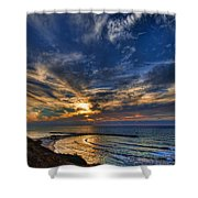 Birdy Bird At Hilton Beach Shower Curtain by Ron Shoshani