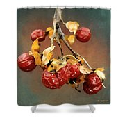 Bittersweet Memories Shower Curtain by RC DeWinter