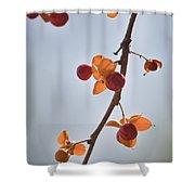 Bittersweet Vine Shower Curtain by Teresa Mucha