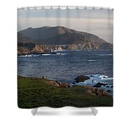Bixby Bridge And Cows Shower Curtain by Mike Reid