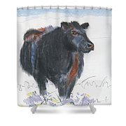 Black Cow Drawing Shower Curtain by Mike Jory