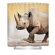Black Rhinoceros Shower Curtain by Johan Swanepoel